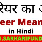 Career Meaning in Hindi
